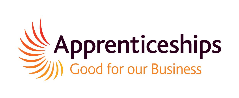 Kinetic Apprenticeships 2014